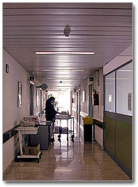 Luis Montes. Licenciado en Medicina. Justicia paliativa