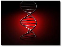 Dios, centro del debate.ADN