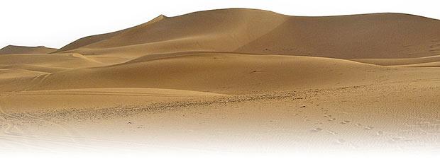 Sahara, encuentro con la sabiduría
